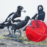 It's a Football - Magpies